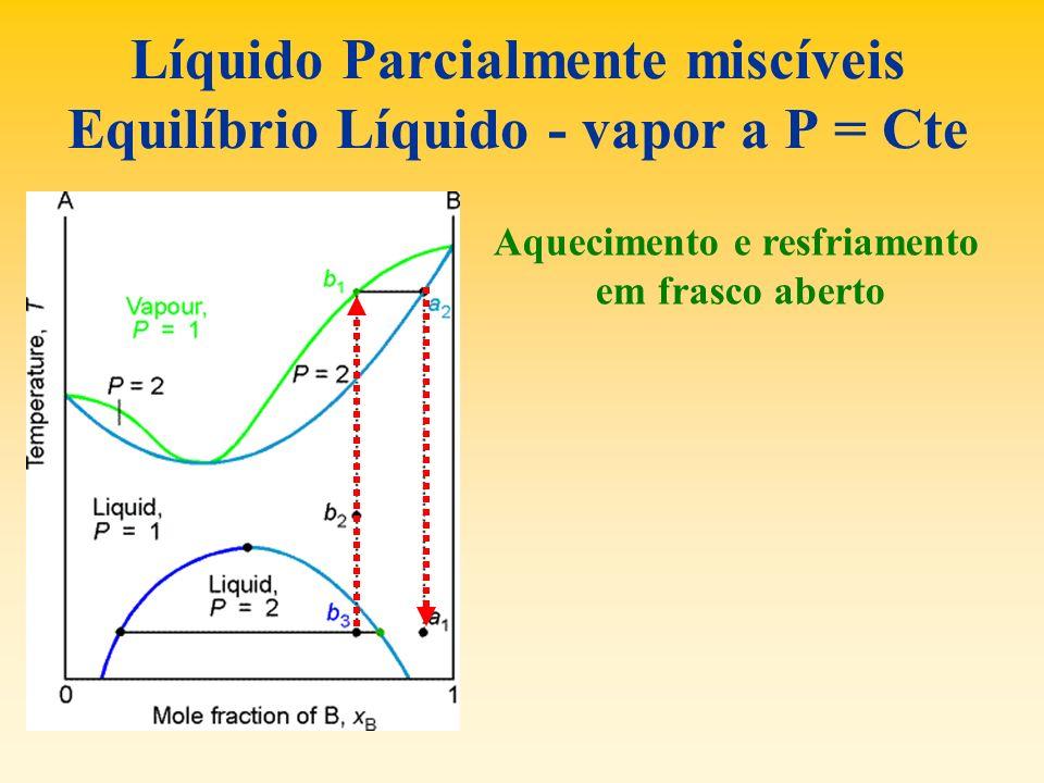 Líquido Parcialmente miscíveis Equilíbrio Líquido - vapor a P = Cte