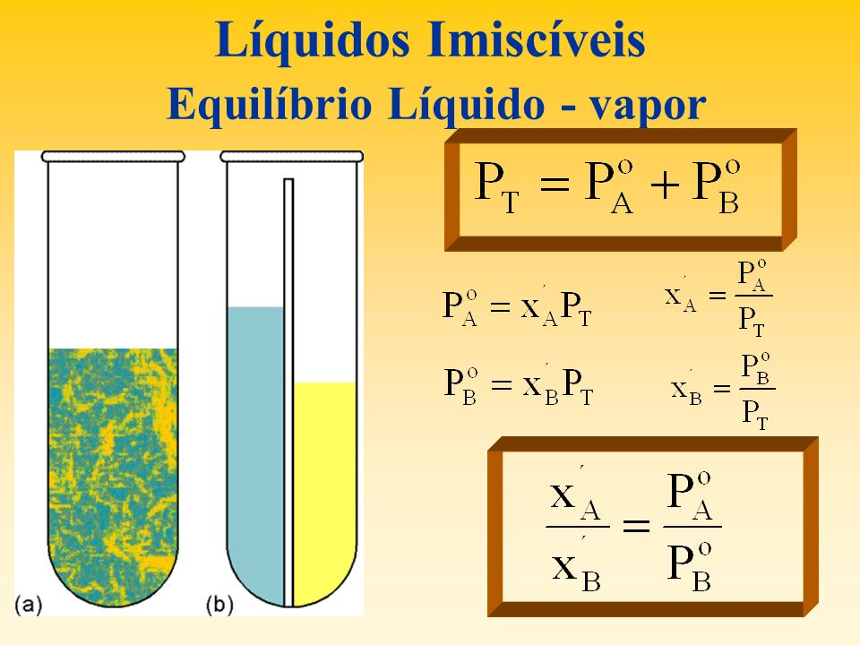 Líquidos Imiscíveis Equilíbrio Líquido - vapor