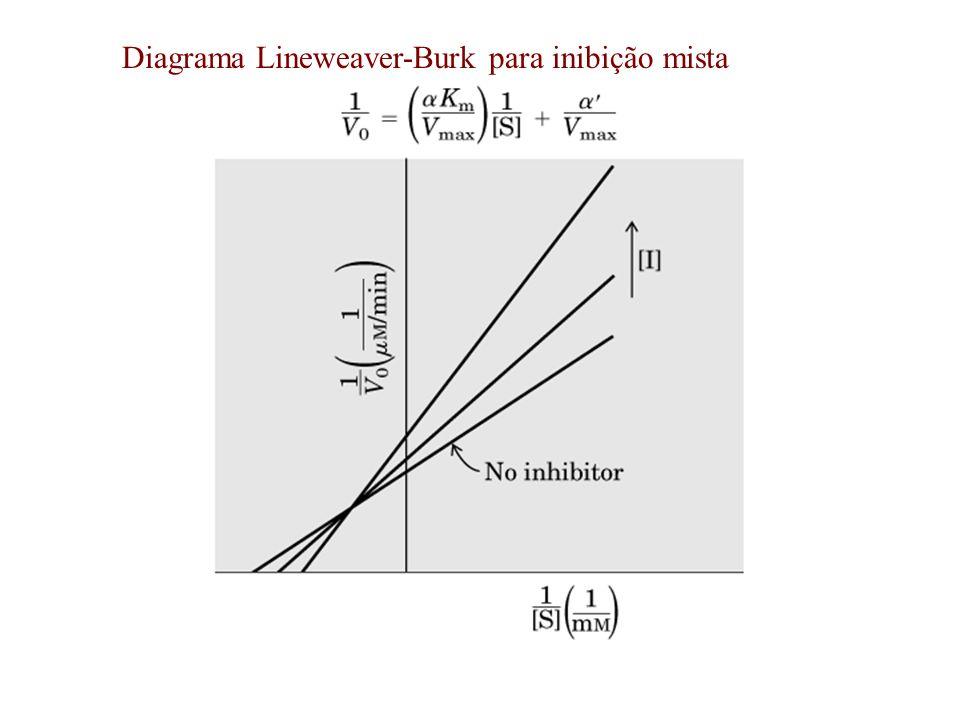 Diagrama Lineweaver-Burk para inibição mista