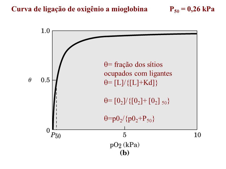 Curva de ligação de oxigênio a mioglobina P50 = 0,26 kPa