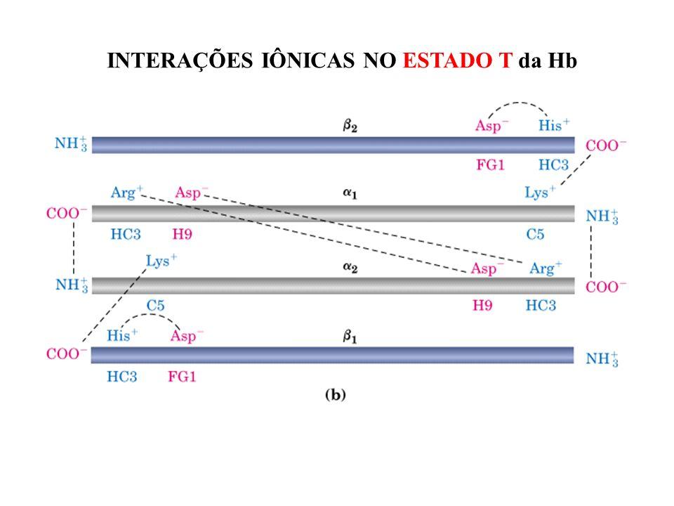 INTERAÇÕES IÔNICAS NO ESTADO T da Hb