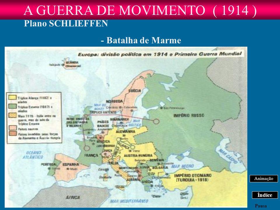 A GUERRA DE MOVIMENTO ( 1914 )