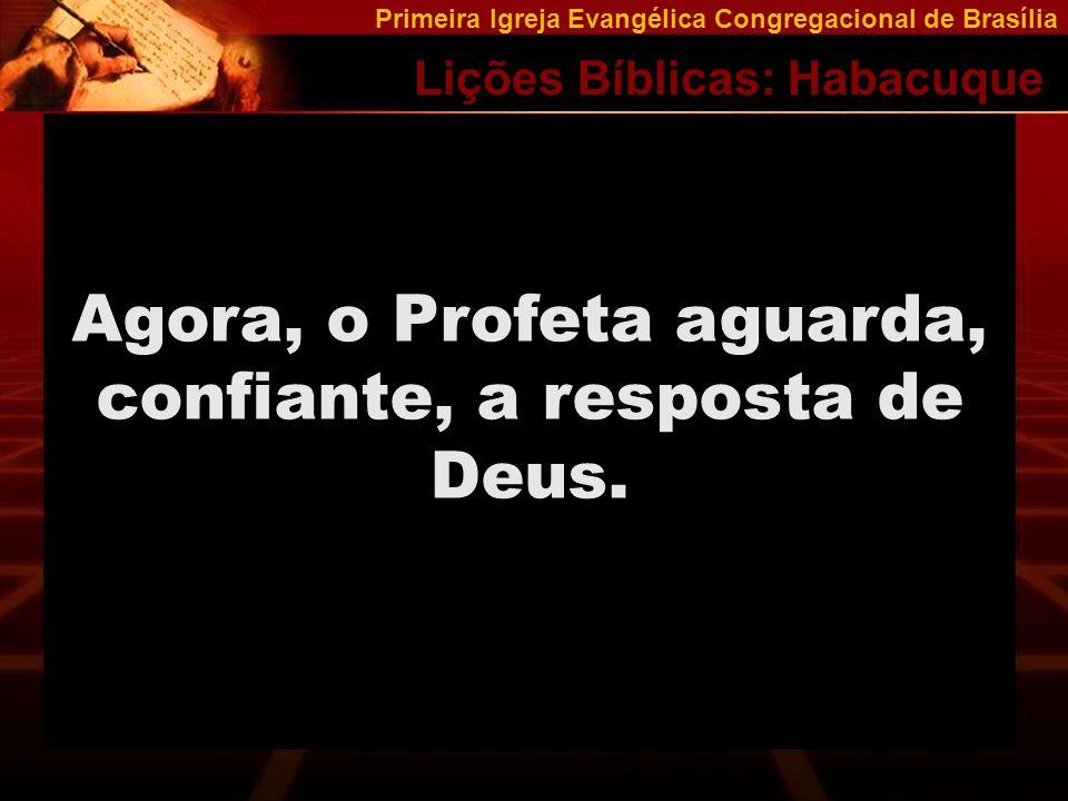 Agora, o Profeta aguarda, confiante, a resposta de Deus.