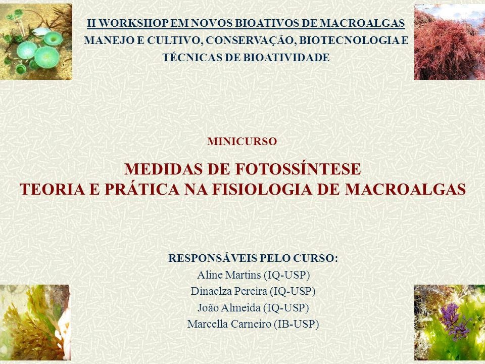 MEDIDAS DE FOTOSSÍNTESE TEORIA E PRÁTICA NA FISIOLOGIA DE MACROALGAS