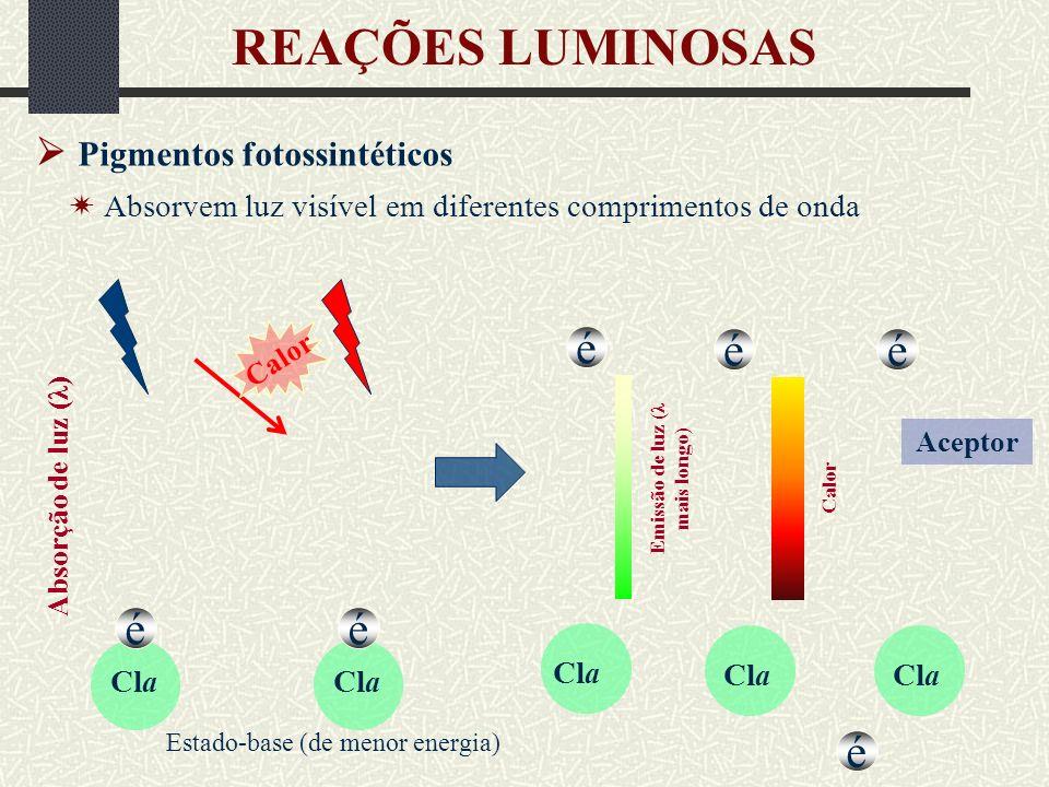 Emissão de luz (λ mais longo)