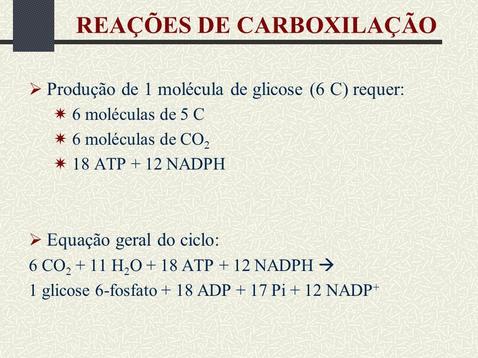 REAÇÕES DE CARBOXILAÇÃO