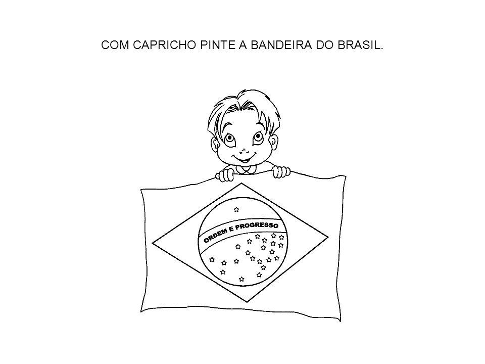 COM CAPRICHO PINTE A BANDEIRA DO BRASIL.