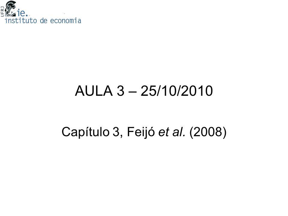 AULA 3 – 25/10/2010 Capítulo 3, Feijó et al. (2008)