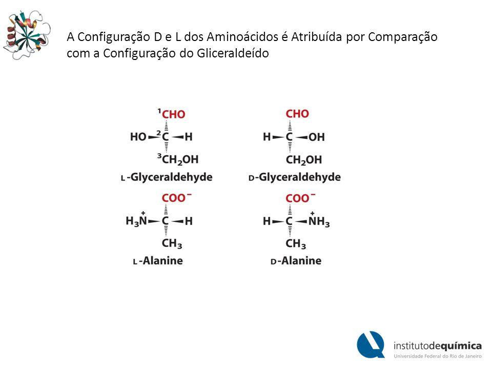 A Configuração D e L dos Aminoácidos é Atribuída por Comparação com a Configuração do Gliceraldeído