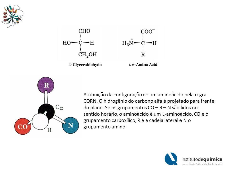 Atribuição da configuração de um aminoácido pela regra CORN