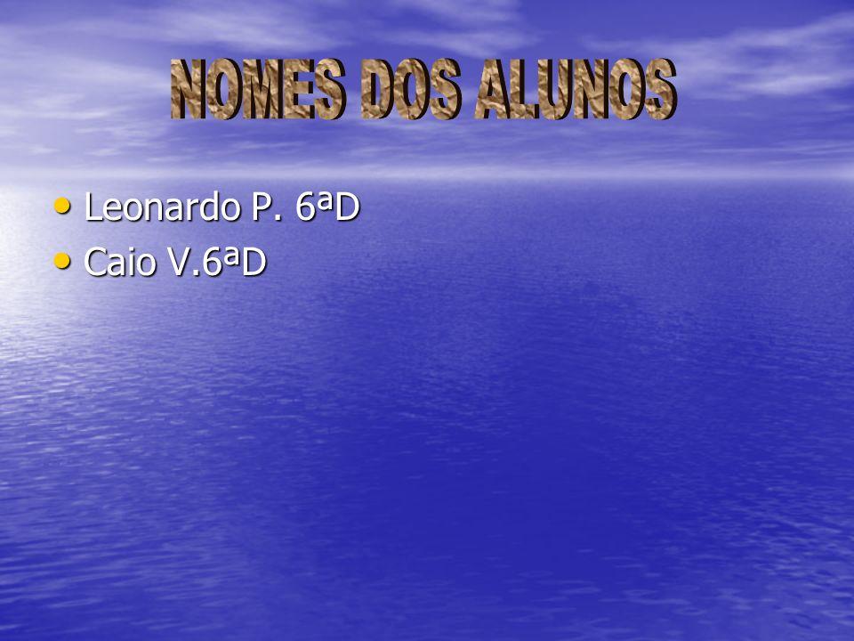 NOMES DOS ALUNOS Leonardo P. 6ªD Caio V.6ªD