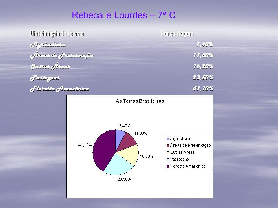 Rebeca e Lourdes – 7ª C Distribuição de Terras Porcentagem Agricultura