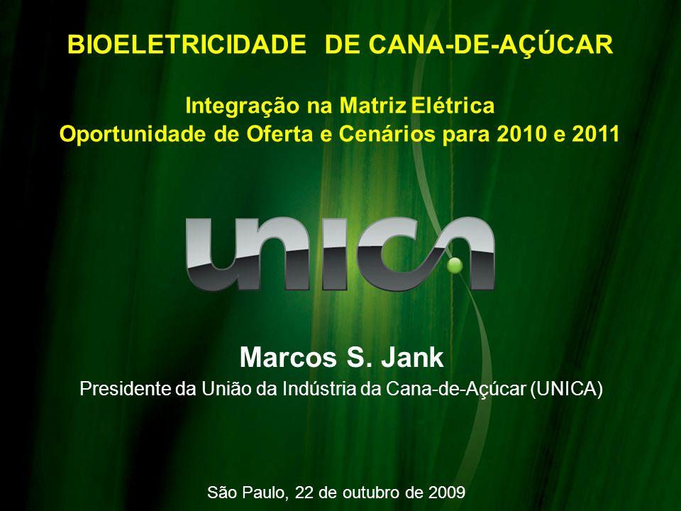 Marcos S. Jank BIOELETRICIDADE DE CANA-DE-AÇÚCAR