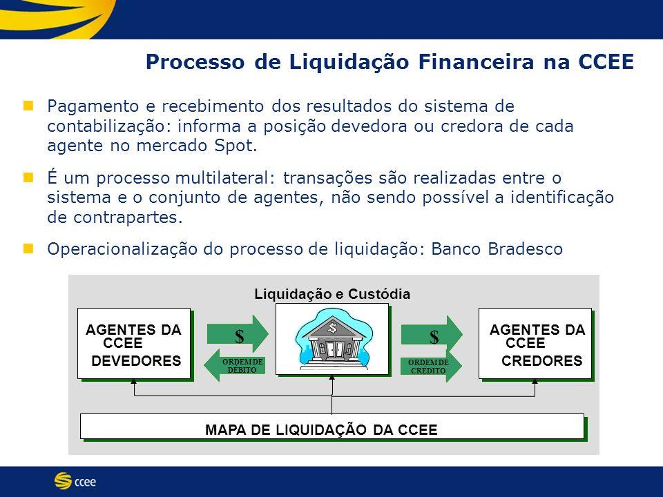 Processo de Liquidação Financeira na CCEE