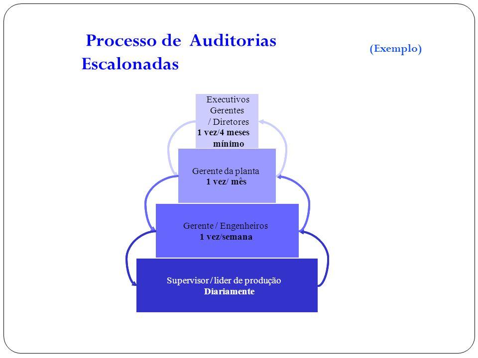 Processo de Auditorias Escalonadas