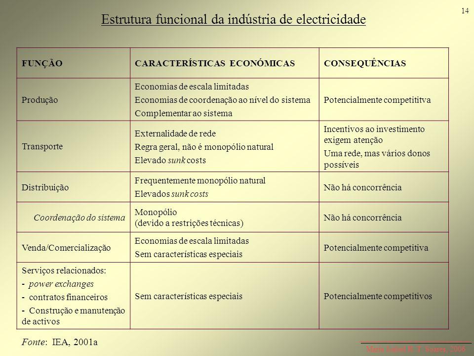 Estrutura funcional da indústria de electricidade
