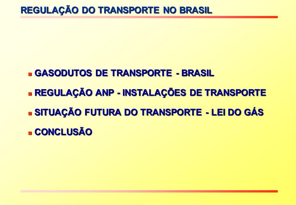 REGULAÇÃO DO TRANSPORTE NO BRASIL