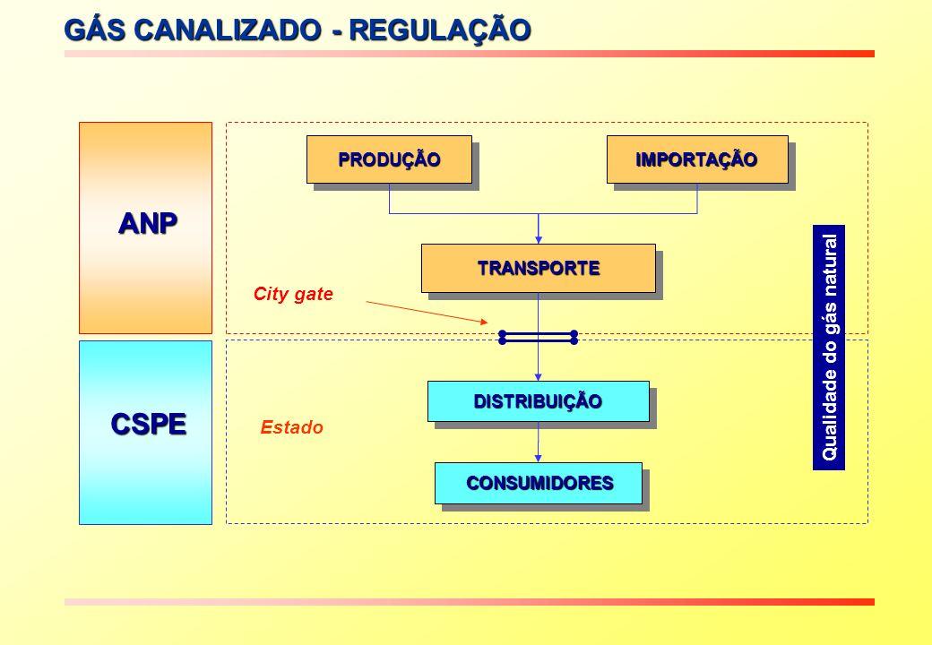 GÁS CANALIZADO - REGULAÇÃO