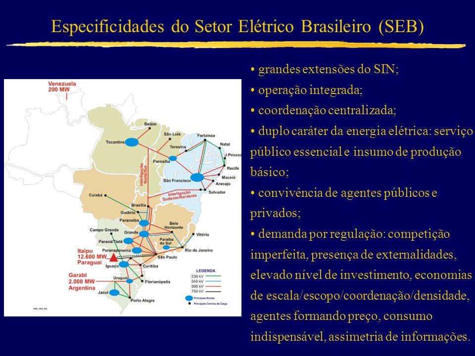 Especificidades do Setor Elétrico Brasileiro (SEB)