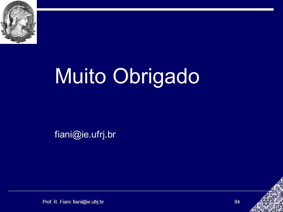 Muito Obrigado fiani@ie.ufrj.br