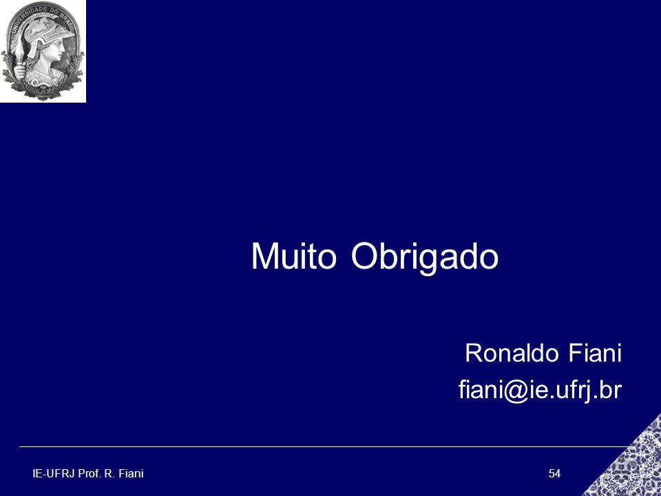 Muito Obrigado Ronaldo Fiani fiani@ie.ufrj.br IE-UFRJ Prof. R. Fiani