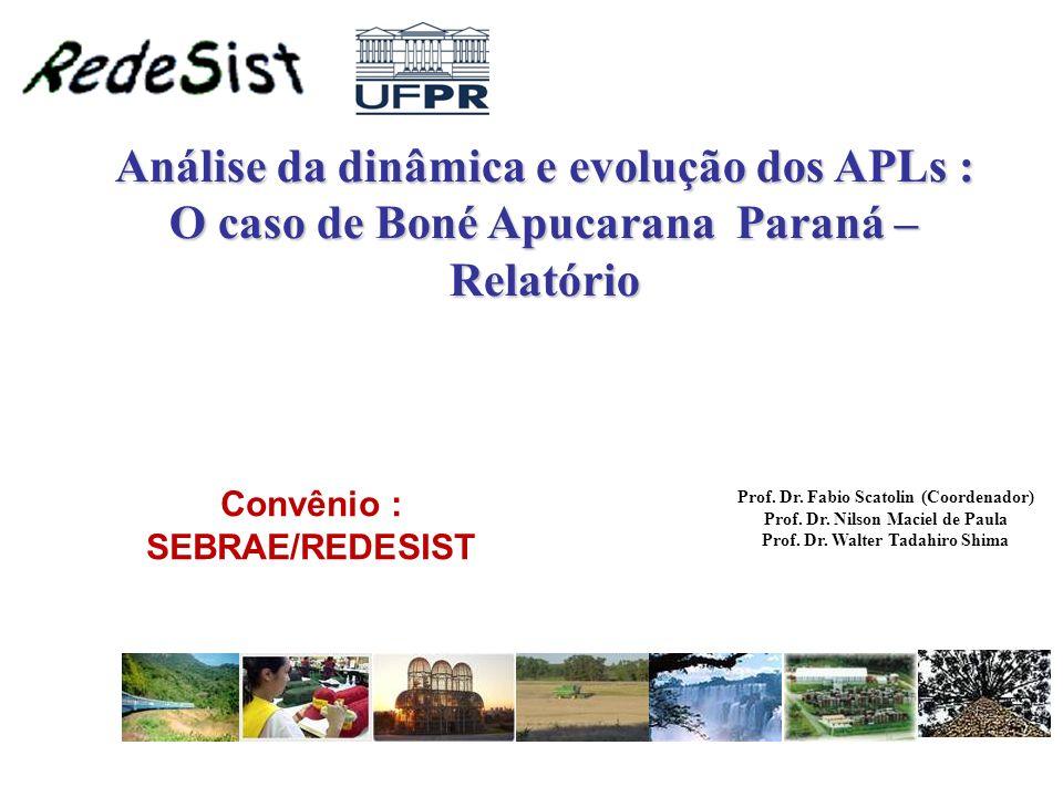 Análise da dinâmica e evolução dos APLs : O caso de Boné Apucarana Paraná – Relatório