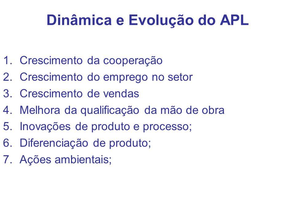 Dinâmica e Evolução do APL