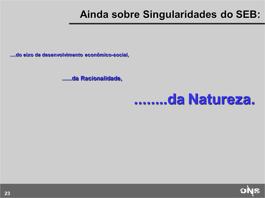 Ainda sobre Singularidades do SEB: