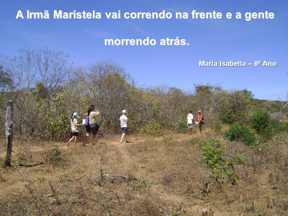 A Irmã Maristela vai correndo na frente e a gente