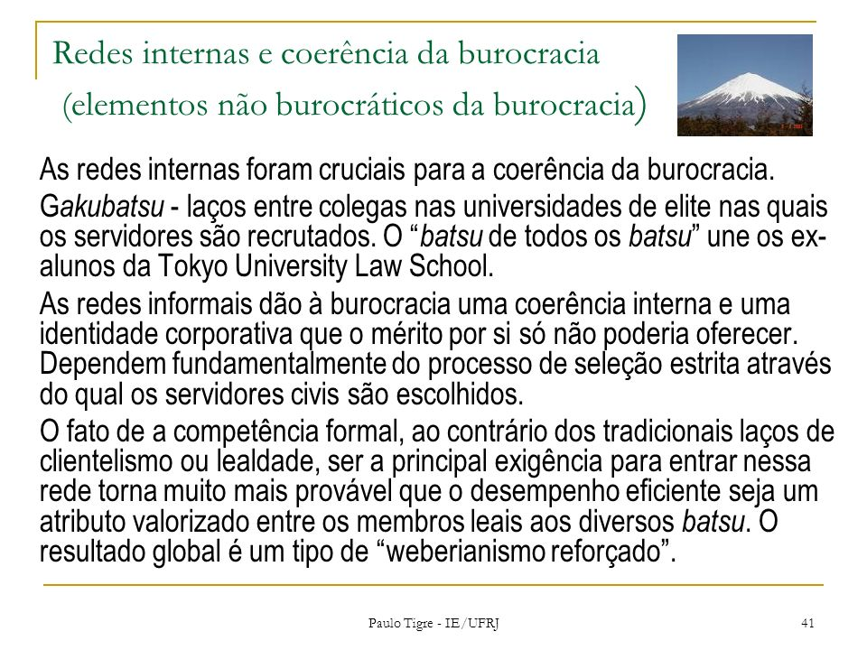 Redes internas e coerência da burocracia (elementos não burocráticos da burocracia)