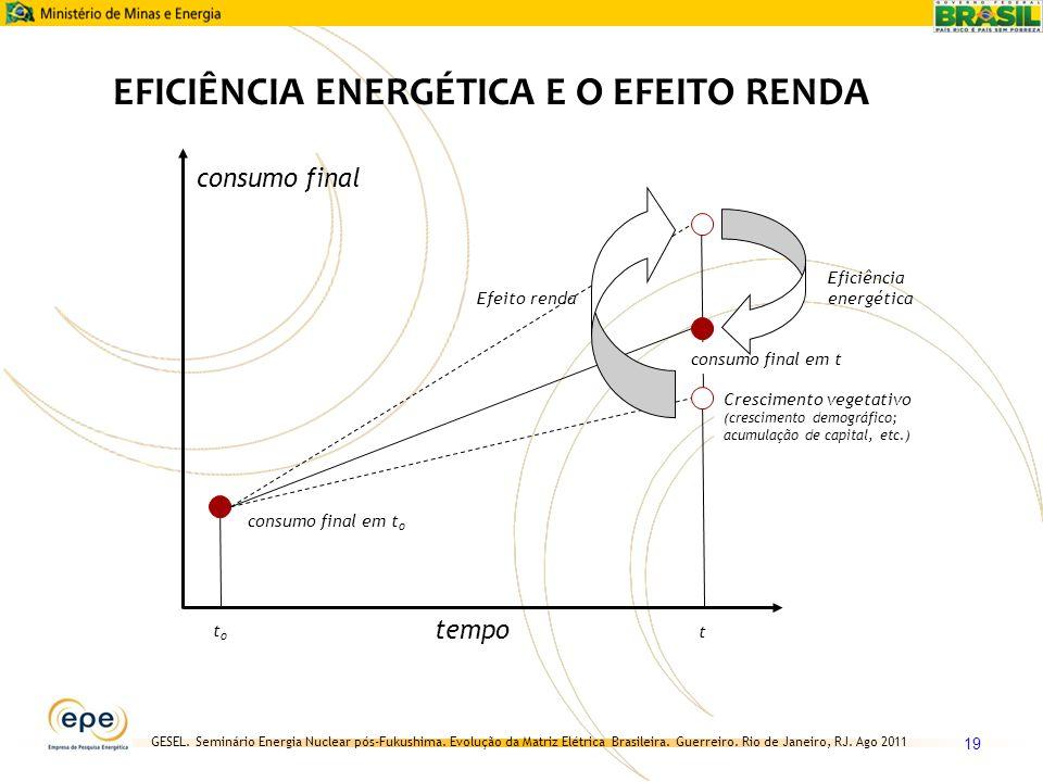 EFICIÊNCIA ENERGÉTICA E O EFEITO RENDA