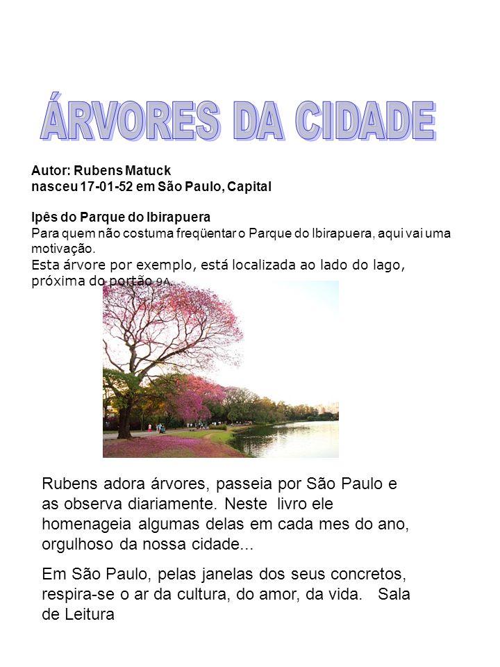 ÁRVORES DA CIDADE Autor: Rubens Matuck. nasceu 17-01-52 em São Paulo, Capital. Ipês do Parque do Ibirapuera.
