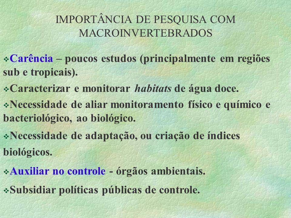 IMPORTÂNCIA DE PESQUISA COM MACROINVERTEBRADOS