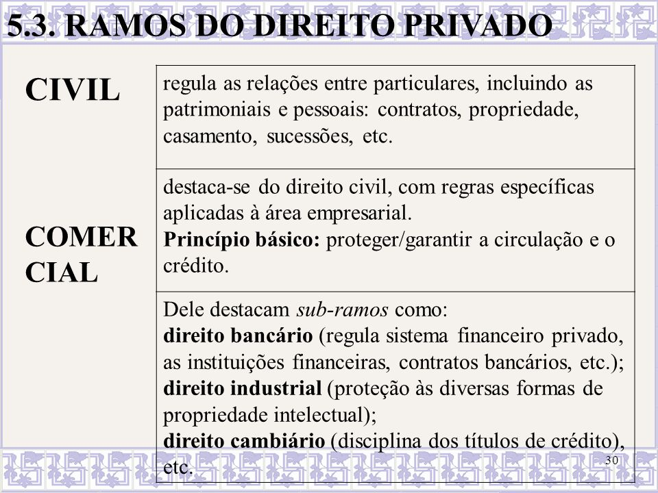 5.3. RAMOS DO DIREITO PRIVADO CIVIL