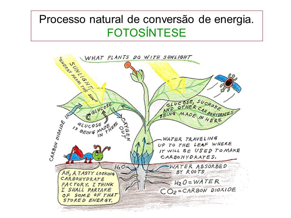 Processo natural de conversão de energia.
