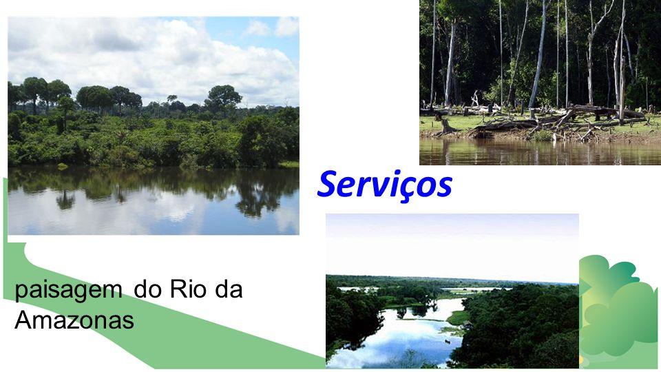 Serviços paisagem do Rio da Amazonas