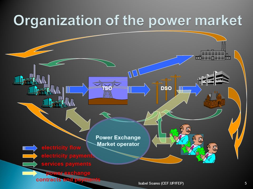 Organization of the power market