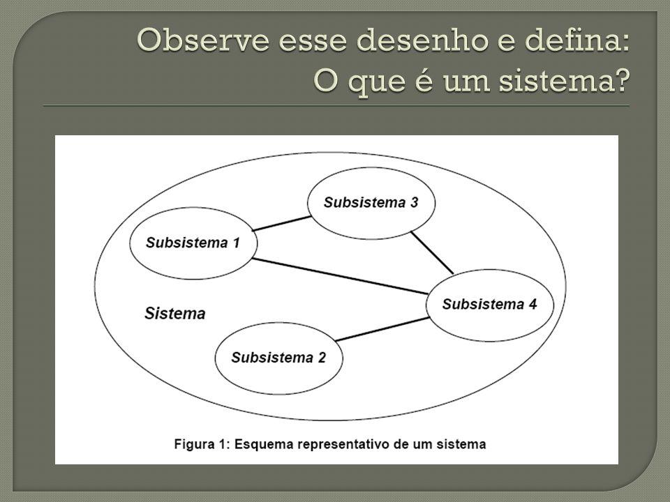 Observe esse desenho e defina: O que é um sistema