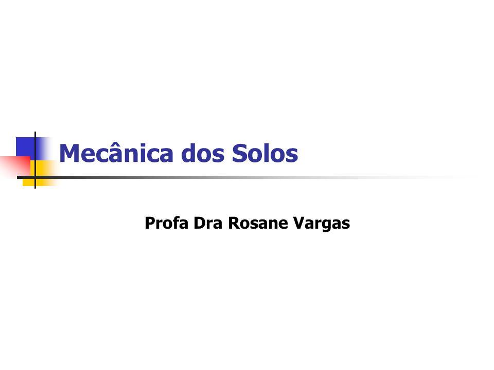 Profa Dra Rosane Vargas