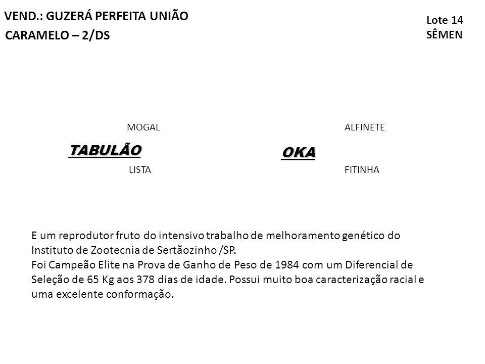 VEND.: GUZERÁ PERFEITA UNIÃO CARAMELO – 2/DS