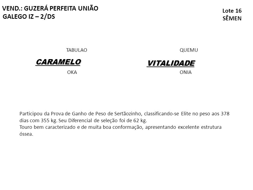 VEND.: GUZERÁ PERFEITA UNIÃO GALEGO IZ – 2/DS