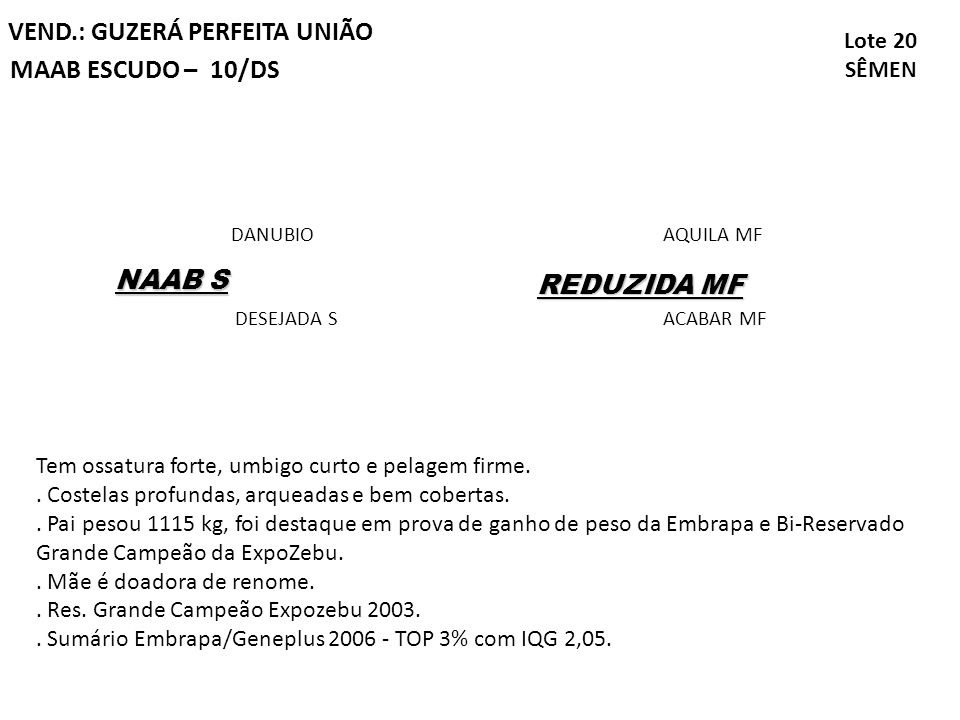 VEND.: GUZERÁ PERFEITA UNIÃO MAAB ESCUDO – 10/DS