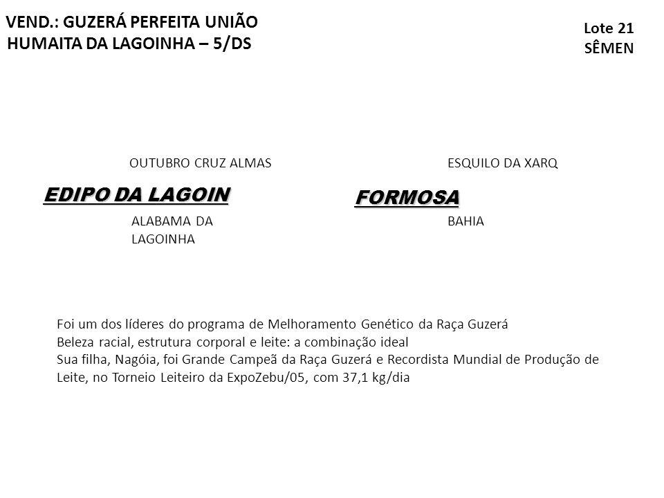 VEND.: GUZERÁ PERFEITA UNIÃO HUMAITA DA LAGOINHA – 5/DS