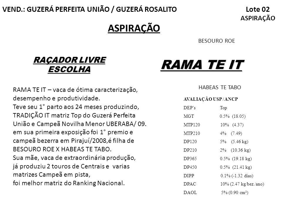 RAMA TE IT ASPIRAÇÃO Lote 02 ASPIRAÇÃO