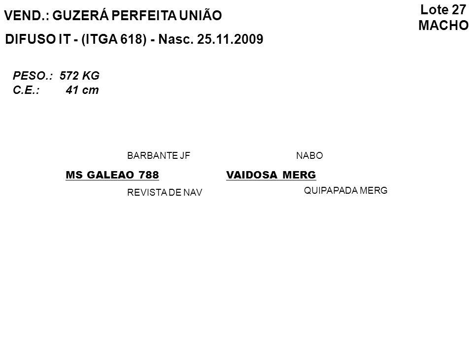 VEND.: GUZERÁ PERFEITA UNIÃO