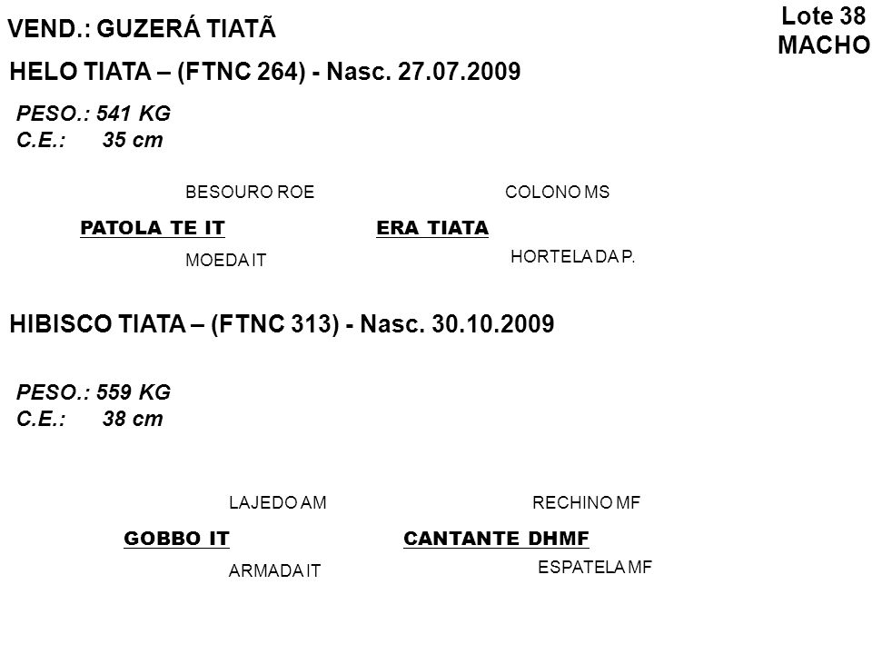 HELO TIATA – (FTNC 264) - Nasc. 27.07.2009