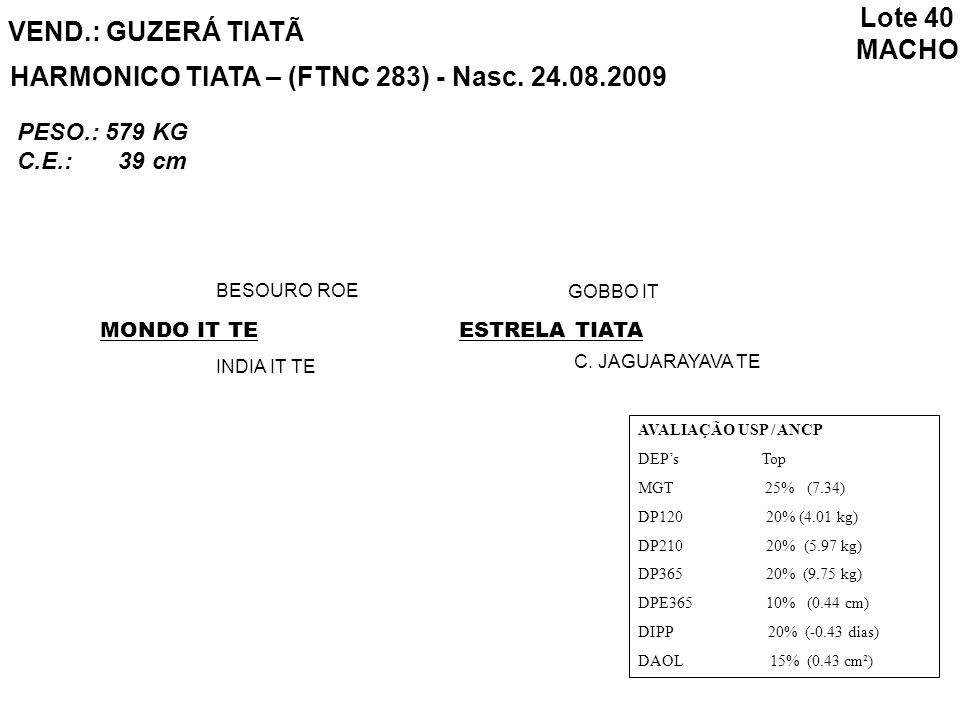 HARMONICO TIATA – (FTNC 283) - Nasc. 24.08.2009