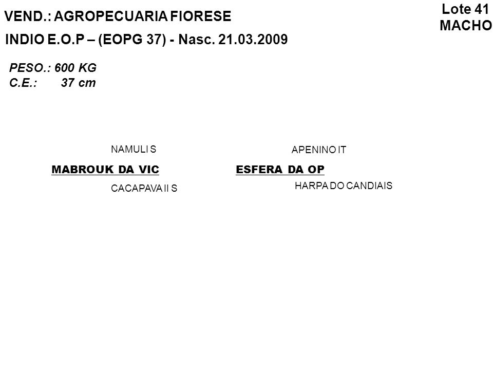 VEND.: AGROPECUARIA FIORESE