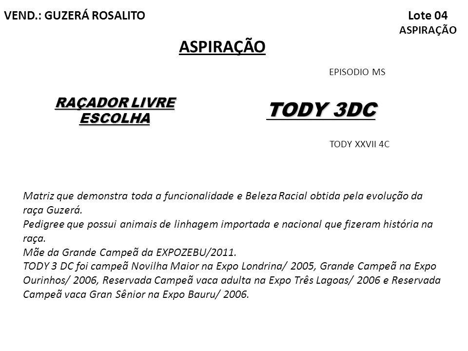 TODY 3DC ASPIRAÇÃO Lote 04 ASPIRAÇÃO VEND.: GUZERÁ ROSALITO