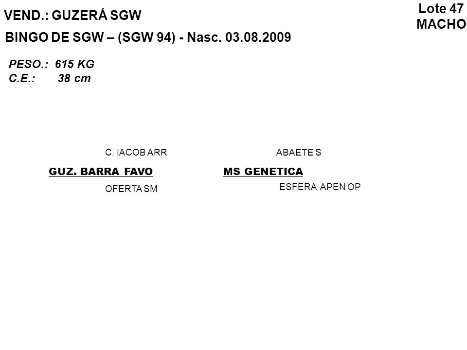 BINGO DE SGW – (SGW 94) - Nasc. 03.08.2009